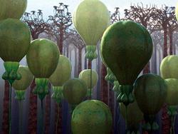 plantas globo