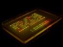 bacterias codificantes
